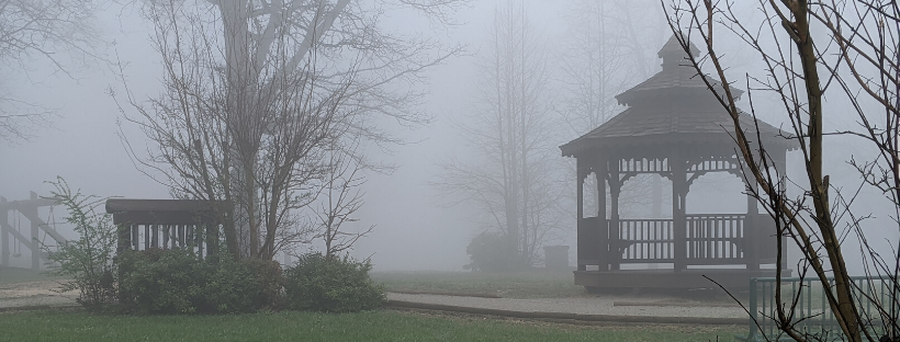 foggy morning in Monteagle